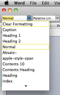 Microsoft Word Style menu