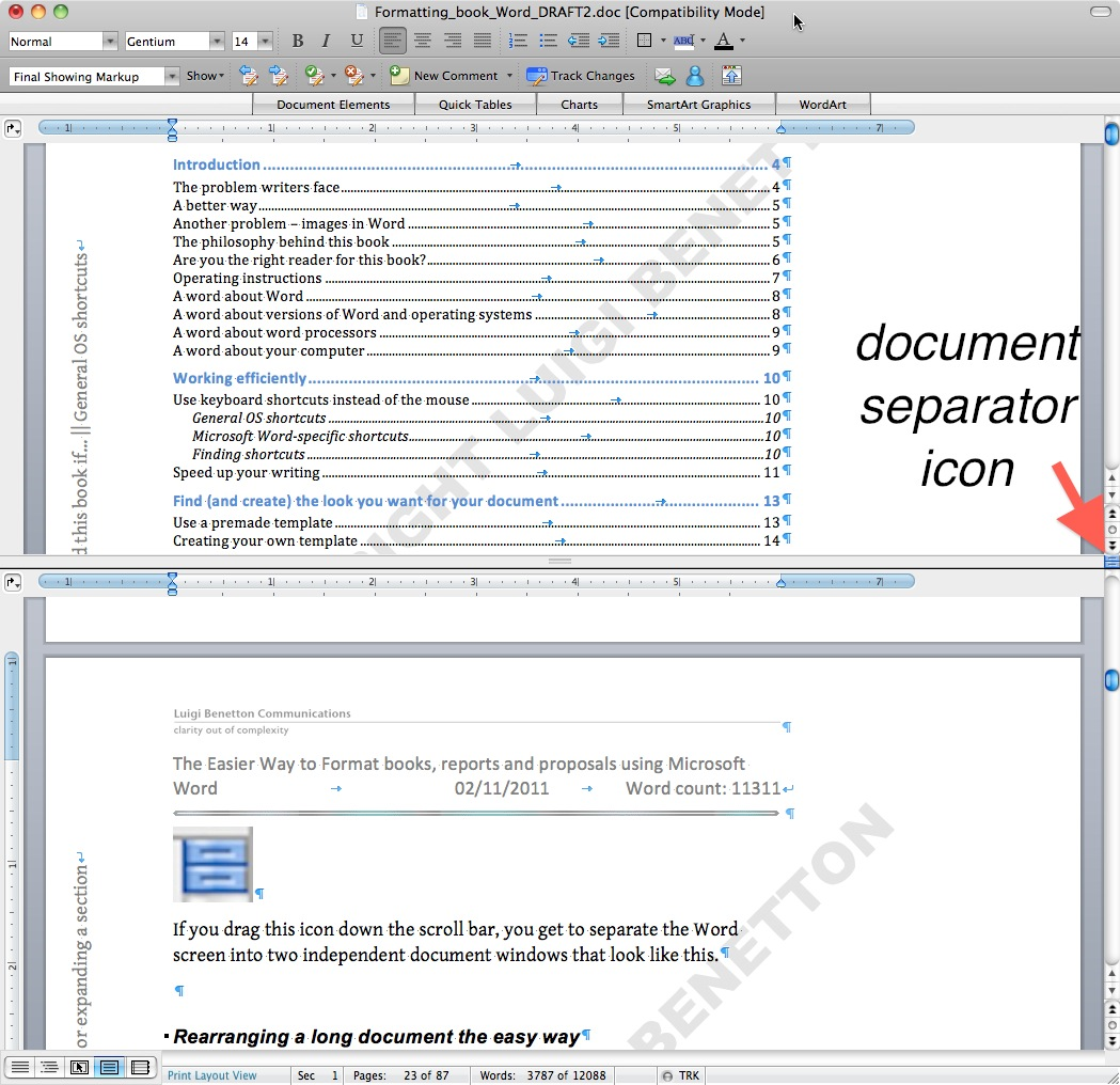 Microsoft Word - viewing two pages from the same document